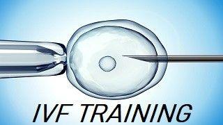 IVF Training at World Laparoscopy Hospital