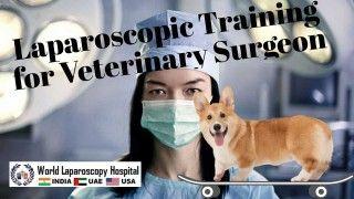 Laparoscopic Training for Veterinary Surgeon